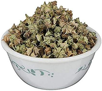 Dayna OFFicial store Gokhru Chota Tribulus Terrestris Seeds Rapid rise Small Caltrops