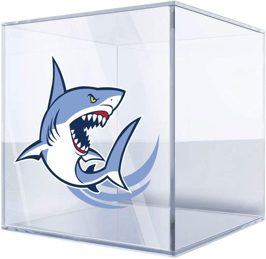 Stickers Sticker Shark Attack Selling 24 19 X 2 Max 75% OFF