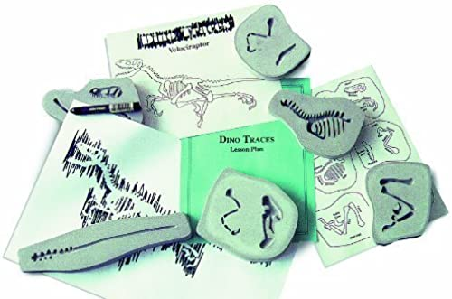 Dino Traces - Velociraptor Classroom Science Kit by Dino Traces