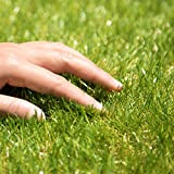 iimono117 人工芝 色・毛足の長さが選べる リアル ロール人工芝 (幅1m×2m/5m/10m) 春色/夏色 U字ピン付き ベランダ バルコニー 庭 屋上 テラス マット シート (2m×毛足35mm, 夏色)