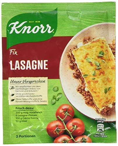 Knorr Fix Würzbasis Lasagne, 2 Portionen, 52g
