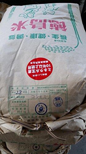 令和元年産 徳島県産 コシヒカリ 玄米 徳島米 各種サイズ 精米可 (玄米のまま, 10kg)