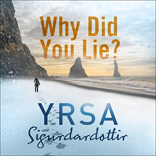 Why Did You Lie? audiobook cover art