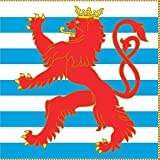 magFlags Flagge: XL Army Colours of Luxembourg Obverse   Fahne 2.16m²   150x150cm » Fahne 100% Made in Germany