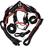 Equine Outlet Deluxe Webbing Driving Harness - Black/Red Horses (Full)