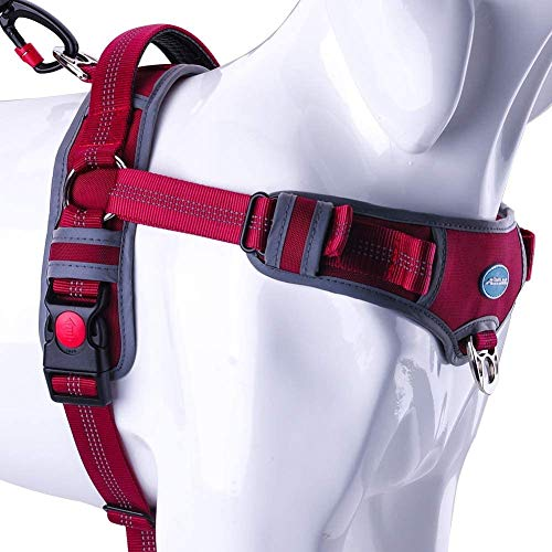 ThinkPet No Pull Harness Atmungsaktives Sportgeschirr - Fluchtsichere, reflektierende, gepolsterte Hundesicherheitsweste mit rückseitigen/vorderen Griffklammern, leicht für das Lauftraining