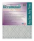 Accumulair FD21X23A Diamond Disposable Air Filter
