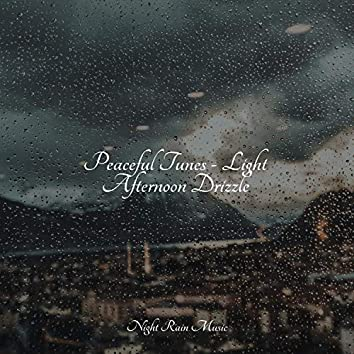 Peaceful Tunes - Light Afternoon Drizzle