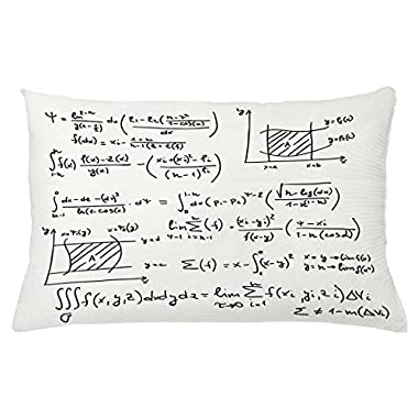 Lunarable Mathematics Classroom Throw Pillow Cushion Cover, Scientific Research Graphs Proof Field of Algebra Physics Lesson, Decorative Accent Pillow Case, 26 W X 16 L Inches, Eggshell Black