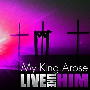 My King Arose