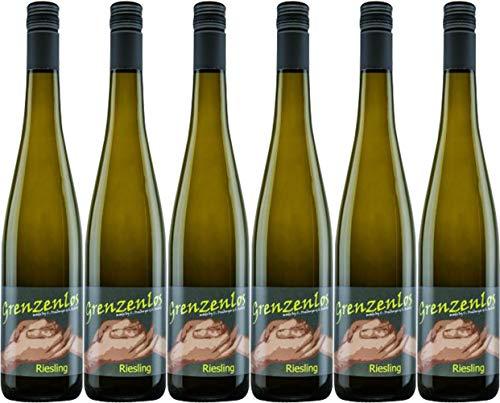 Wein- und Sektgut Wind-Rabold Riesling GRENZENLOS 2019 Trocken (6 x 0.75 l)