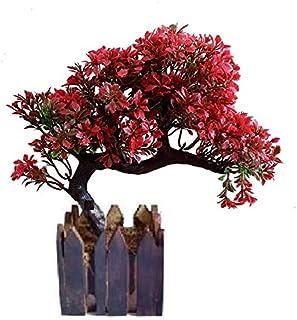 Sofix Bonsai Wild Plant Artificial Plant with Pot - 25 cm (Red)