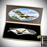 The Bone Edge 8.5' Eagle Pattern Handle Stainless Steel Blade Folding Knife With Box + Free eBook by Survival Steel