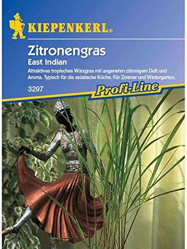 Zitronengras East Indian