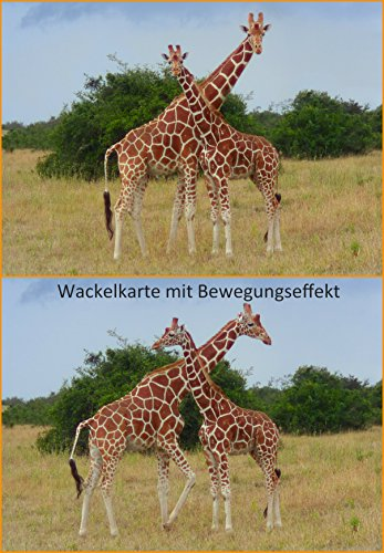 Lentikular-Postkarte mit Wechselbild/Wackelkarte Giraffe (Flip):