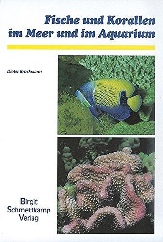 Fische und Korallen im Meer und im Aquarium