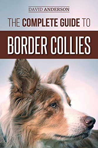 The Complete Guide to Border Collies: Training, teaching, feeding,...