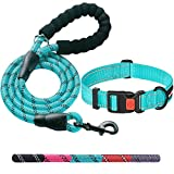 ladoogo Heavy Duty Dog Leash - Comfortable Padded Handle, 5 ft Long - Dog Leashes for Small Medium Large Dogs (Leash+Collar XS Neck 10.5'-13.5', Blue)