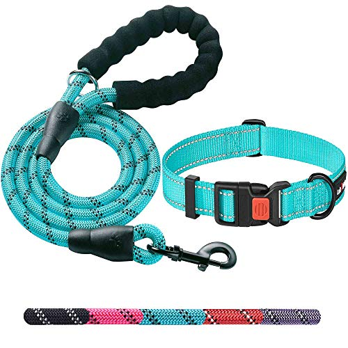 Ladoogo Heavy Duty Dog Leash - Comfortable Padded Handle, 5 ft Long - Dog Leashes for Small Medium...