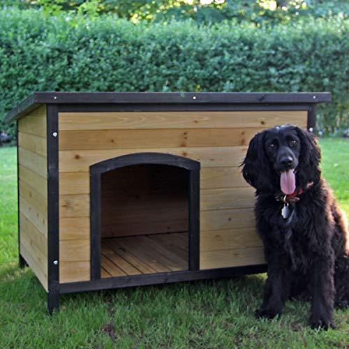 zoo-xxl Hundehütte Hundehaus Eddy (215 - M) mit aufklappbarem Dach