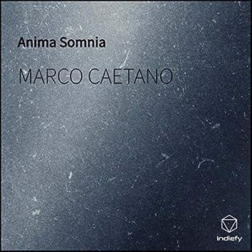Anima Somnia