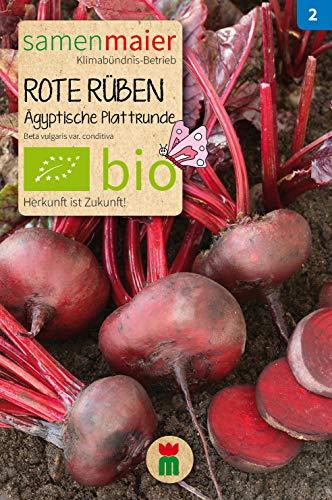 BIO Rote Rüben, Ägyptische Plattrunde (Beta vulgaris var. conditiva)