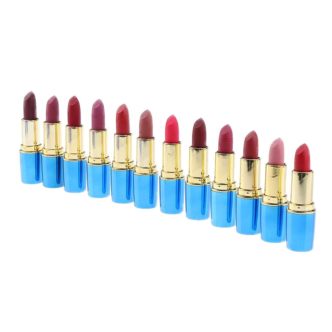 掻くシリンダー大使DYNWAVE リップスティックセット 女の子用 リップスティックセット 全12色