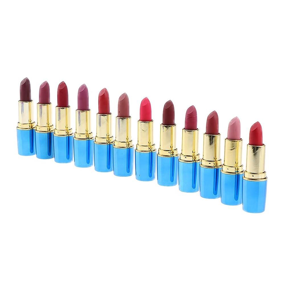 はっきりしないカテゴリーステレオタイプPerfeclan お化粧 化粧品 マットリップスティックセット 防水 12色