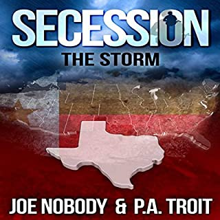 Secession: The Storm cover art