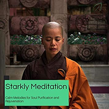 Starkly Meditation - Calm Melodies For Soul Purification And Rejuvenation
