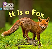 It is a Fox: Phase 3 (Big Cat Phonics for Little Wandle Letters and Sounds Revised)