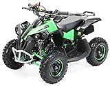 Actionbikes Motors Mini Kinder Quad ATV RENEBLADE 49cc 2-Takt Pocket Quad - Original Easy Pull Starter - Notaus Leine - Kinder Pocketquad (Schwarz/Grün)