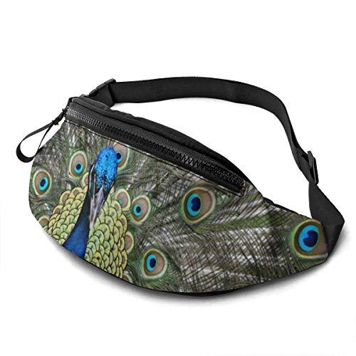 AOOEDM Cute Peacock Running Belt Belt Bag Fashion Waist Bag Bag for Men Women Sports Hiking