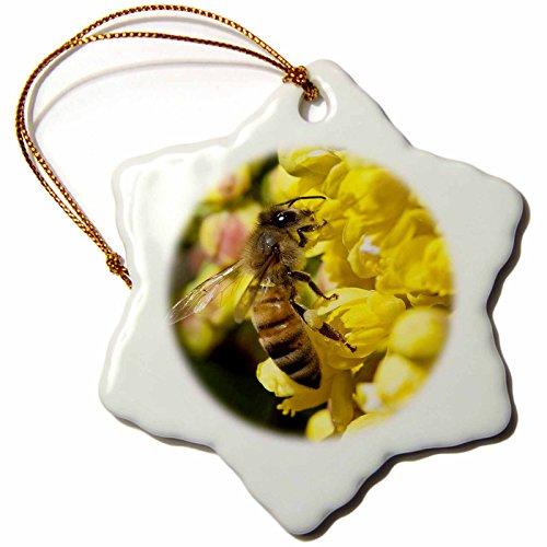 3dRose orn_93933_1 Honey Bee on Oregon Grape, Keizer, Oregon US38 RBR0079 Rick A. Brown Snowflake Porcelain Ornament, 3-Inch