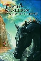 The Black Stallion Adventures! (Box Set) by Walter Farley(2005-10-11)