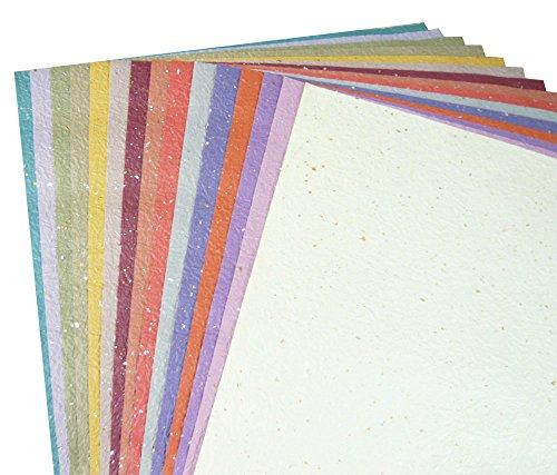 【Amazon.co.jp 限定】和紙かわ澄 日本の色 もみ和紙 金銀振り 大判 約38.5×53cm 15色入