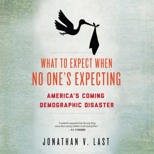 What to Expect When No One's Expecting audiobook cover art