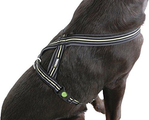 """Kerbl Hunde-Geschirr """"Xenos"""", schwarz/Neongelb mit stufenlos verstellbarem Bauchgurt in 3 verschiedenen Größen (S/M/L) (L (50-80cm, 25mm))"""