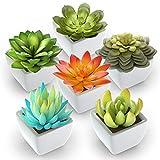 Pack of 6 - Mini Fake Succulents Artificial Plants - Ceramic White Potted Succulents - Faux Succulents Plants for Home Office Shelf Decorations
