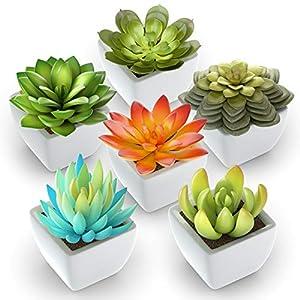 Silk Flower Arrangements Pack of 6 - Mini Fake Succulents Artificial Plants - Ceramic White Potted Succulents - Faux Succulents Plants for Home Office Shelf Decorations