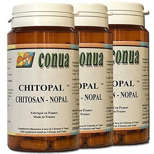 LOT de 3 FLACONS : Chitosan nopal, chitopal® 120 gélules en poudre extra fort chitosan haute densité pureté garantie à 90% Nopal absorbeur coupe-faim fixateur