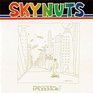Skynuts