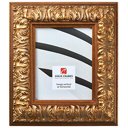 Craig Frames Barroco, Antique Gold Baroque Picture Frame, 20 by 30 Inch