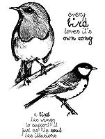 Birds透明クリアシリコンスタンプ/DIYスクラップブッキング用シール/フォトアルバム装飾用クリアスタンプシートST0593