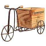 Naliovker Modelo de Triciclo de Madera Maceta de Hierro Forjado Soporte de Flor de Bicicleta Estante de Almacenamiento Interior Casa Jardín Decoración de Escritorio Artesanía Regalos