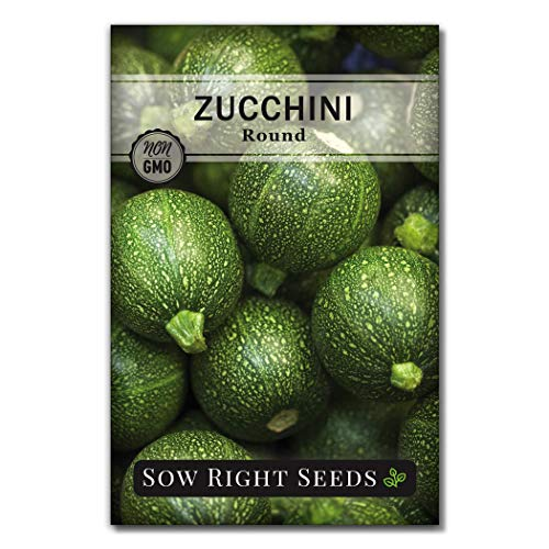 Sow Right Seeds - Round Zucchini Seed for Planting - Non-GMO Heirloom Packet with Instructions to Plant a Home Vegetable Garden - Great Gardening Gift (1)