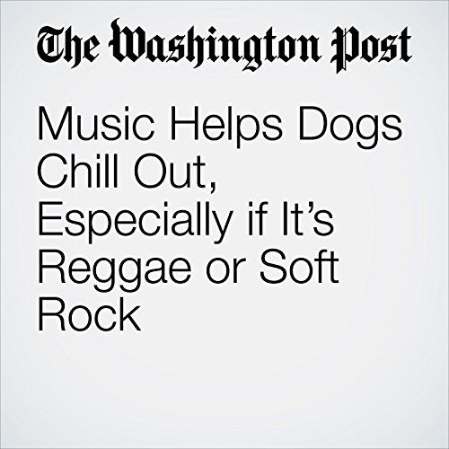 Music Helps Dogs Chill Out, Especially if It's Reggae or Soft Rock copertina