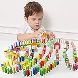 JW-YZWJ Juguetes de Madera Juguetes de Madera educativos 200Pcs Colorido Set Domino para niños Adultos de los niños