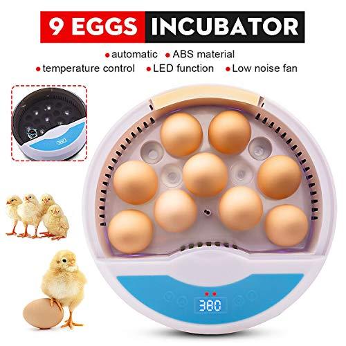 Inkubator, Dyna-Living 9 Eier Mini Inkubator mit automatischer Temperaturregelung zum Geflügel Inkubieren Hühnerente Gans Wachtel Vögel Eier, Vollautomatischer Inkubator zum Schlüpfen von Eiern