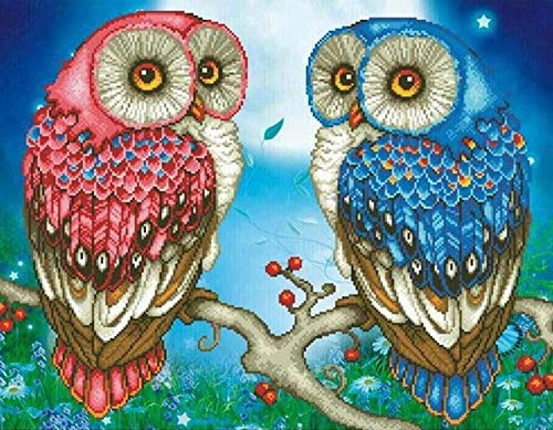 MOL 5D DIY Diamond Painting Cartoon Owl Full Round 3D Strassafbeelding borduurwerk mozaïek decoratie 40x50cm/16x20in